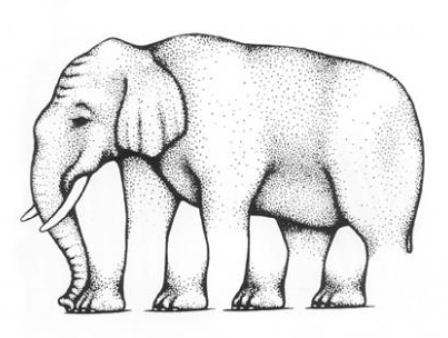 elephant_illusions