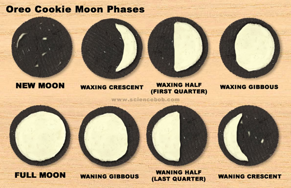 Oreo Cookie Moon Phases ScienceBob – Oreo Moon Phases Worksheet
