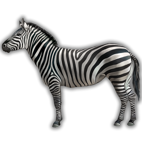 is a zebra white with black stripes or black with white stripes