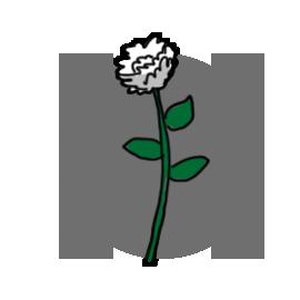 http://sciencebob.com/wp-content/uploads/2014/11/flower1.png