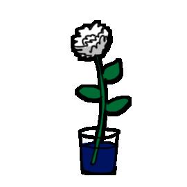 http://sciencebob.com/wp-content/uploads/2014/11/flower2.png