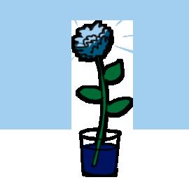 http://sciencebob.com/wp-content/uploads/2014/11/flower3.png