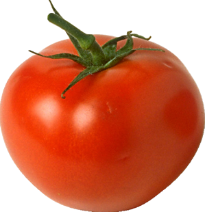 Is a tomato a fruit or a vegetable? - ScienceBob.com